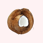 cut coconut on pink background