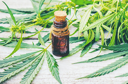 Cbd oil for pain, diet and cancer